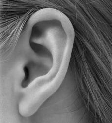 lobe de l'oreille à traiter chez Cleage