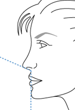 L'angle naso-labial